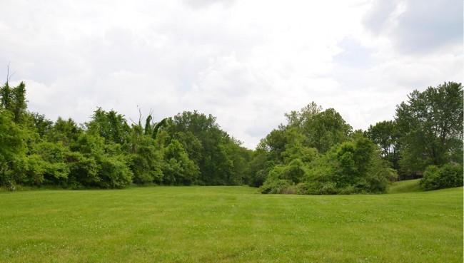 Brookhill Park