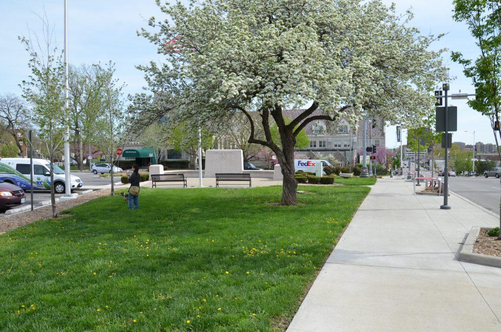 Murray Davis Park