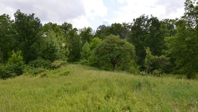 Green Hills Park