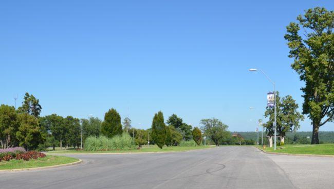 Starlight Road