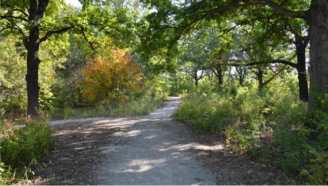 Swope Park: Fox Hollow Trail