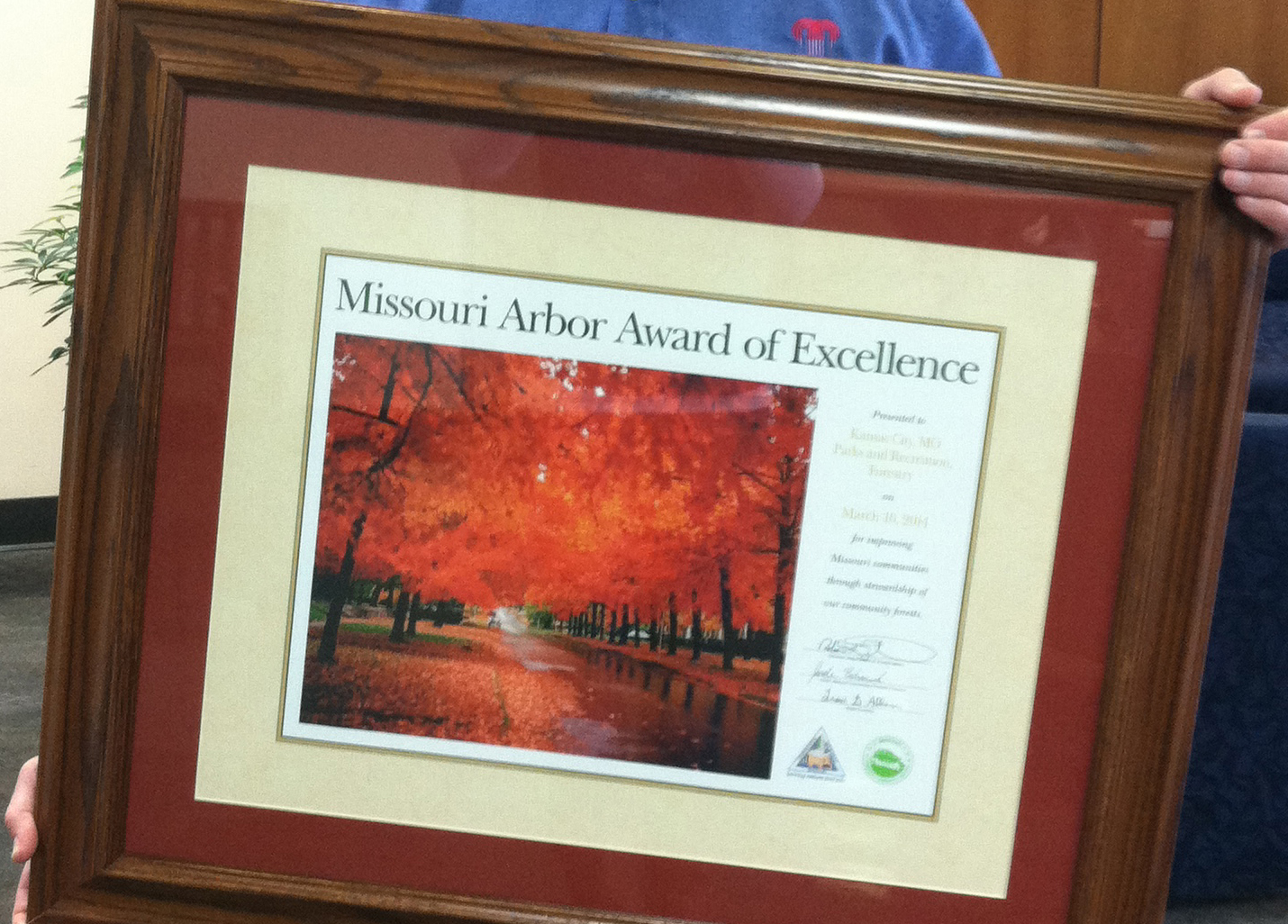 City Receives Missouri Arbor Award of Excellence for Proactive Emerald Ash Borer Management