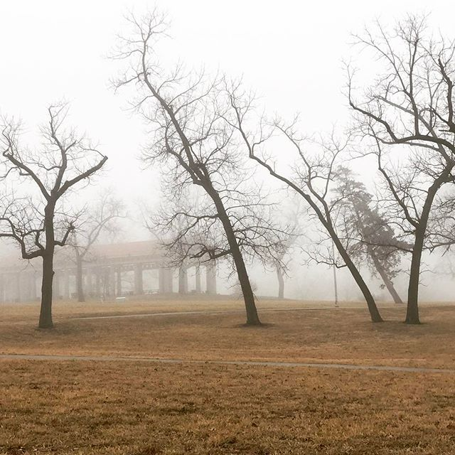 Foggy morning in #KCParks Swope Park. #Fog