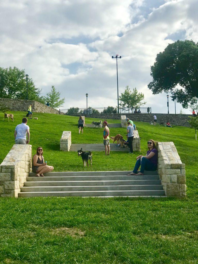 West Terrace Dog Park
