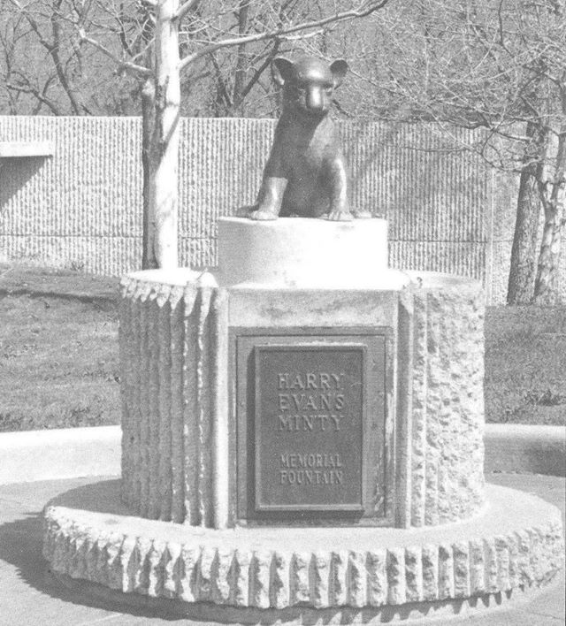 "{Throwback Thursday} This drinking fountain is located in the Kansas City Zoo by the catwalk.It was first dedicated in 1965 to Harry Evans Minty who was on the Park Board from 1942 until 1948. He died in 1955 and in 1965 his daughter Harriet Minty Russell and her family donated a drinking fountain in honor of her father to be placed near the African Veldt. Because of reconstruction at the Zoo, the fountain was moved a few years later to the catwalk area.The lion cub was based on a real one at the Zoo named ""Tike"", a favorite of Mr. Minty. Local sculptor Wheeler Williams crafted a representation of Tike for the fountain.The original base of the fountain was a large marble bowl with water spigots and the lion cub in the center. An inscription at the base read ""Have a drink with a cub and be as brave as a lion"". When the fountain was moved a different base was designed. #TBT #KCParks #KCParks125 #ThrowbackThursday #FromTheArchives"