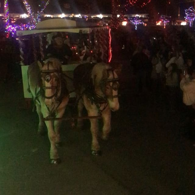 Santa's arrival via horse drawn carriage to #KCParks #SantasWonderland in Penguin Park