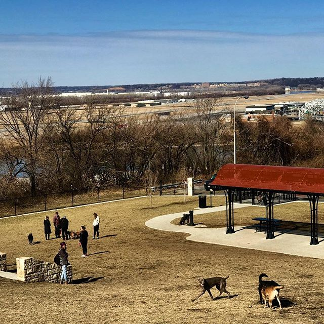 It's a great dog park day! #SundayFunday #WTDP #KCParks #WhereKCPlays