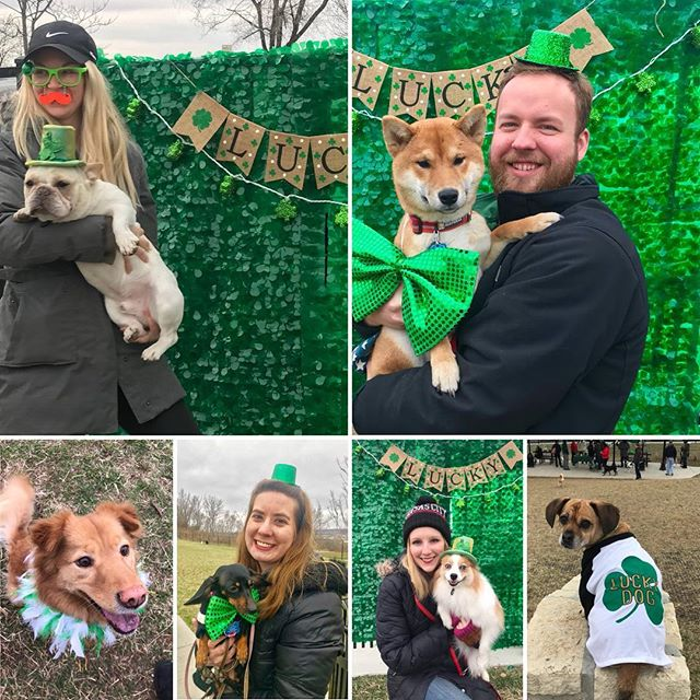 Great times at #LuckyDogs Member Mingle today at West Terrace Dog Park! #KCParks #WhereKCPlays #StPatricksDay