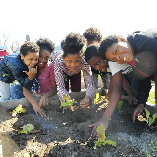 KC Parks, the Giving Grove and Kansas City Community Gardens recently held a garden planting day at Garrison Community Center. The volunteers planted spring crops and six trees! #KCParks #WhereKCPlays