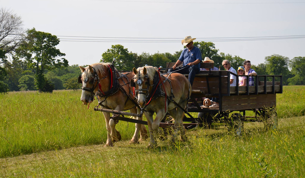 Party on the Prairie: June 2!