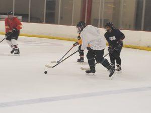 individuals playing hockey