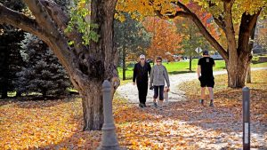 Seniors walking in the park in the fall
