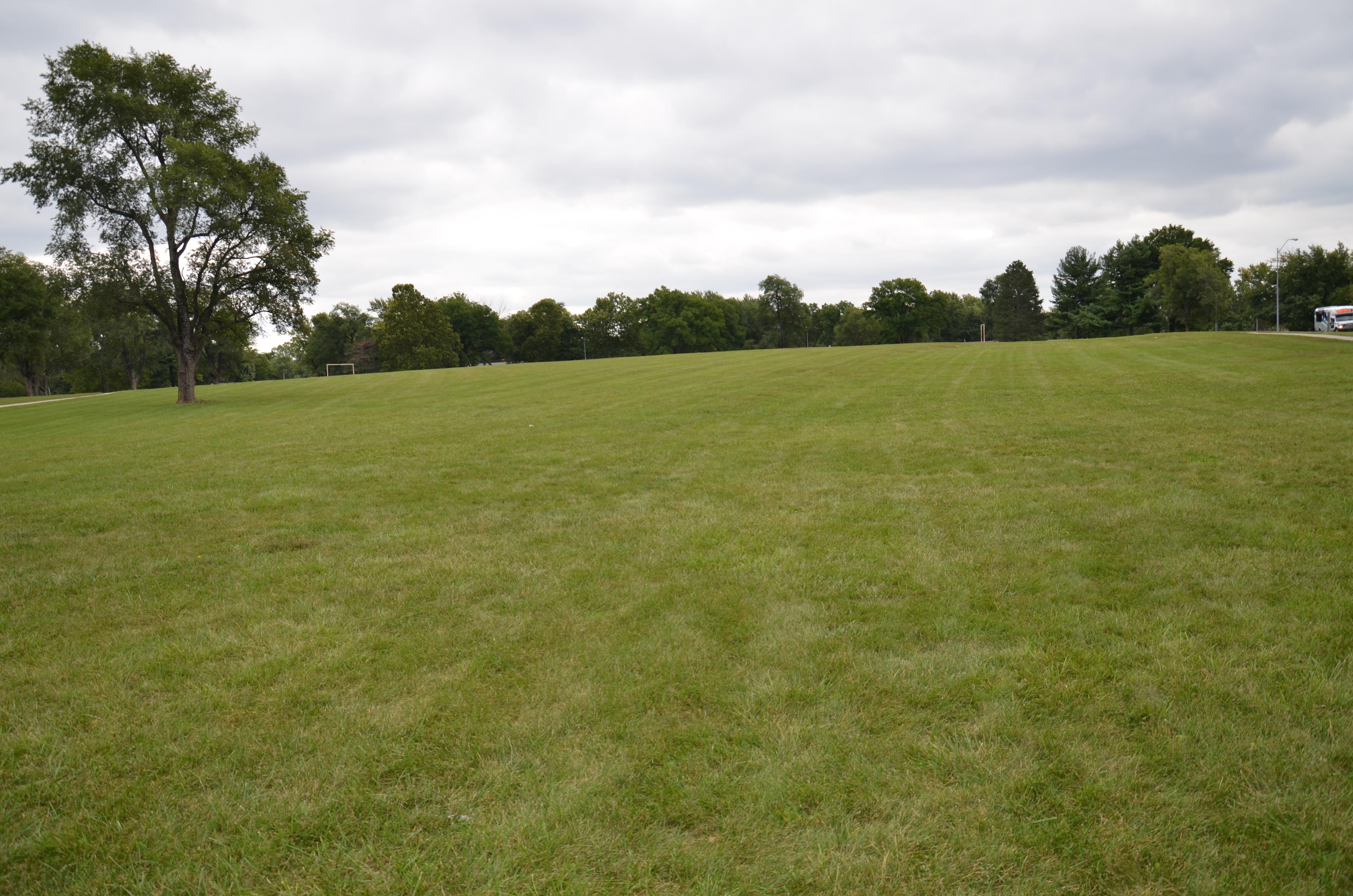 Sycamore Park2
