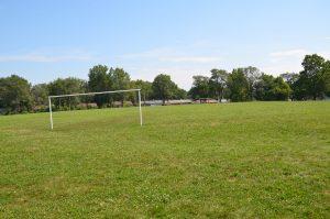 Sycamore Park3