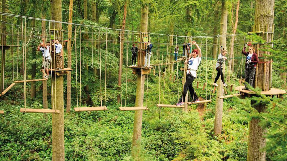 Go Ape Adventure Park Opens Kc Parks And Rec
