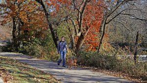 Girl walking her dog at Indian Creek