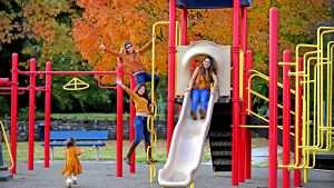 People dressed in fall colors posing for a picture in the fall on the slide set