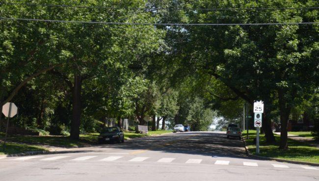Maple Boulevard