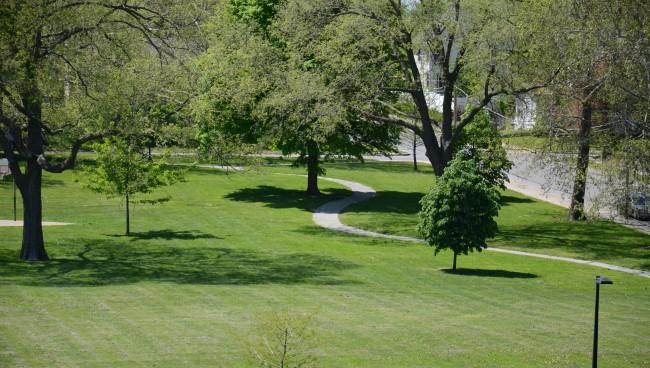 Montgall Park Trail