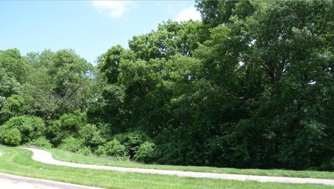 North Brook Park