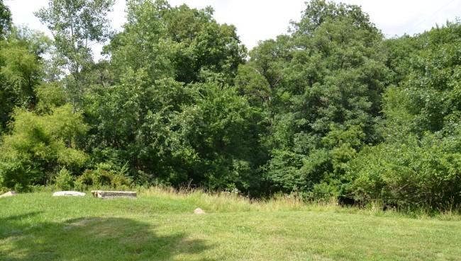 Robinhood Park