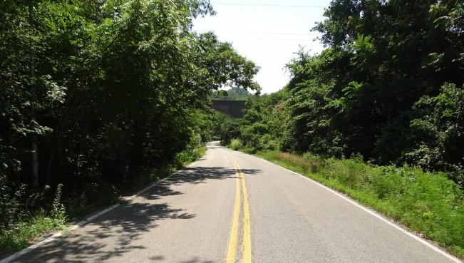 Wildcat Hollow Drive