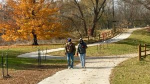 individuals walking trail in fall