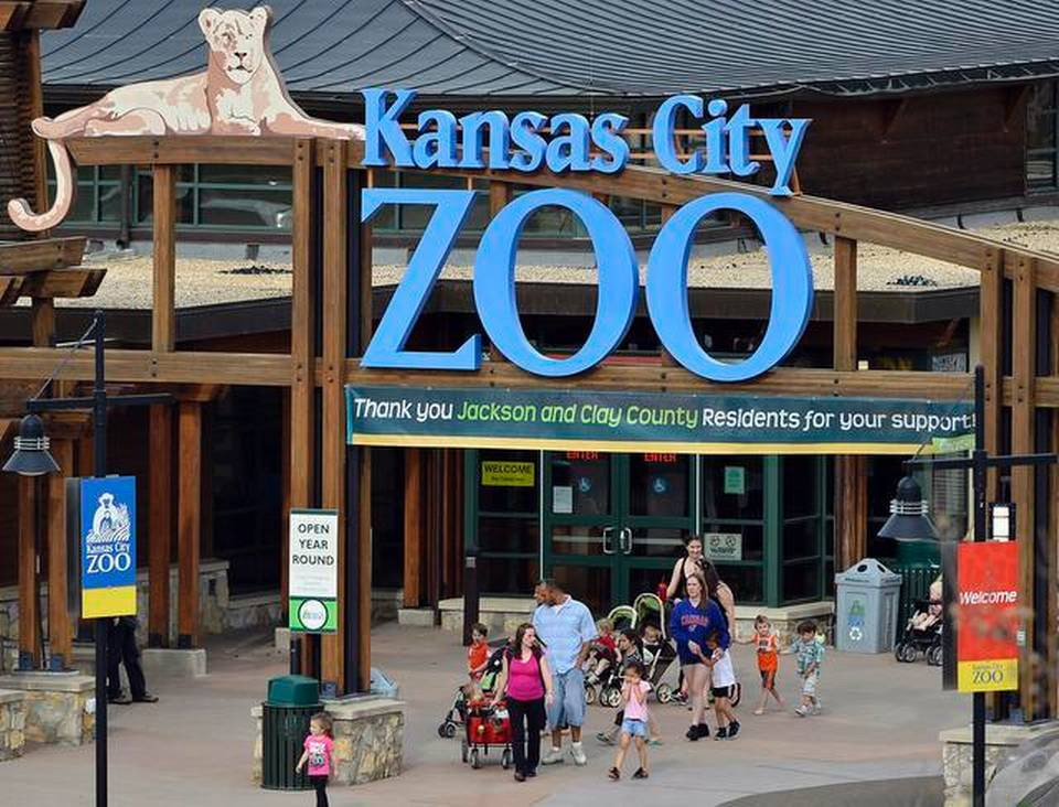 "KC Zoo's ""Postcard to Adventure"" Program Begins"