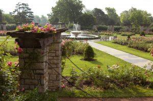 rose garden Fountain Loose Park