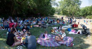 families having picnics