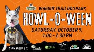 Howl-o-ween at waggin trail dog park