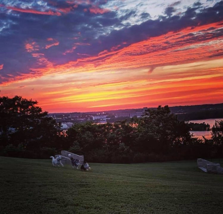 wtdp sunset