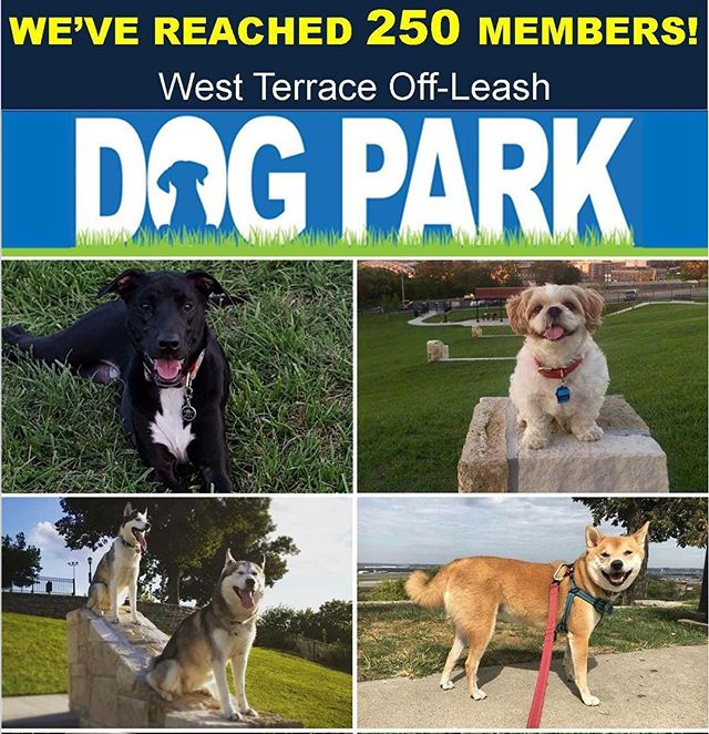 Congratulations to us! #KCParks West Terrace Dog Park has reached 250 members!! Thank you to all members who helped us reach that milestone. We appreciate your support. If you are not yet a member, join us! More at kcparks.org.