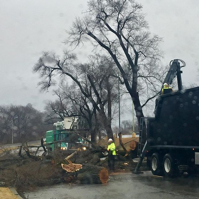 #KCPar‪ks Forestry crews taking care of business! Tree down in Swope Park #TCOB #GoGreenTrucks‬
