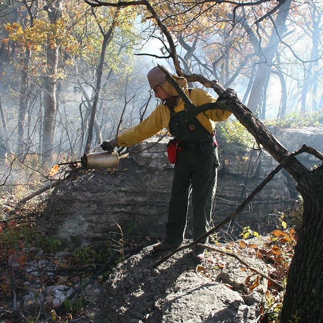 CONTROLLED/PRESCRIBED BURN TODAY: Rocky Point Glade in Swope Park beginning at 9 a.m.  #Fire #Burn #Conservation