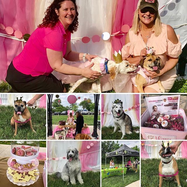 Our West Terrace Dog Park members had fun celebrating the Birthday Princesses and upcoming #RoyalWedding at our Member Mingle last evening. Thanks to Union Hill Animal Hospital for sponsoring! #KCParks #WhereKCPlays #WTDP #WhereKCDogsPlay