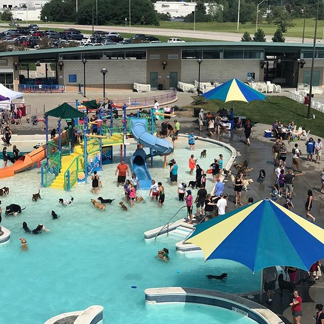 #KCParks invites you and your best friend to close out the season at one (or both) of our water parks! #DippinDogs #WhereKCPlays..NORTH KCSaturday, September 8, 2018 (THREE SESSIONS)The Springs Aquatic Center, 9400 N. Congress Ave.10 a.m.-Noon: Small (under 40 lbs) and Senior DogsNoon-2 p.m.: Large Dogs-Session 1 (40 lbs+)2-4 p.m.: Large Dogs-Session 2 (40 lbs+)Presented in partnership with NAWS.SOUTH KCSunday, September 9, 2018 (TWO SESSIONS)The Bay Water Park, 7101 Longview Rd.Noon-2 p.m.: Small (under 40 lbs) and Senior Dogs2-4 p.m.: Large Dogs (40 lbs+) Only dogs are allowed in the pool. Children under 10 and all dogs must be supervised by an adult; limit of 2 dogs per person. $10 per canine. REGISTER NOW at kcparks.eventbrite.comRegistered dogs go to the front of the line!