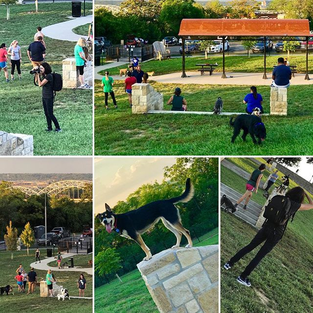 Great night at the dog park with a reporter/photographer from 435 Magazine doing a story on the coolest dog parks in the KC metro!! #KCParks #WhereKCPlays