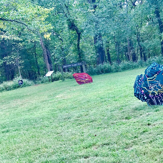 It's a great day to explore the #OpenSpacesKC art installations in Swope Park. #Burnout #KCParks #WhereKCPlays @shawnbitters