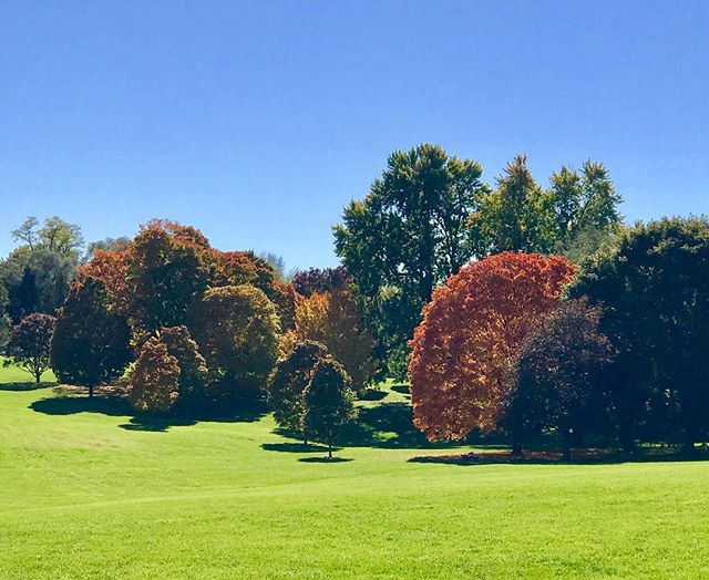 It's going to be a great weekend to get out and enjoy the beautiful Fall foliage! #KCParks #WhereKCPlays