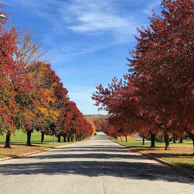 More Fall! We can't get enough of this year's gorgeous #Fall foliage. #SwopePark #KCParks #WhereKCPlays #FallYall #Autumn