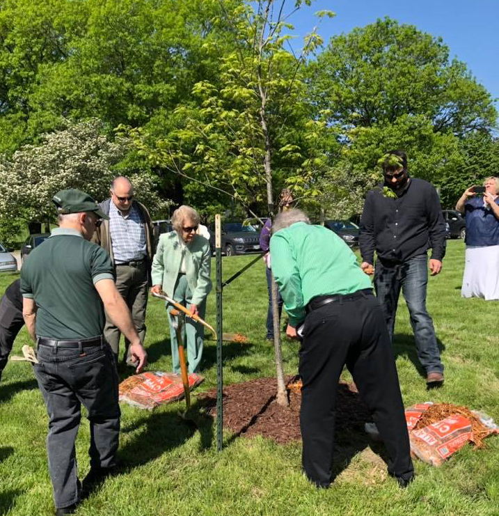 Arbor Day Tree Planting in Honor of George Eib