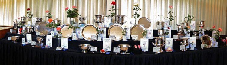 kansas city rose society rose show