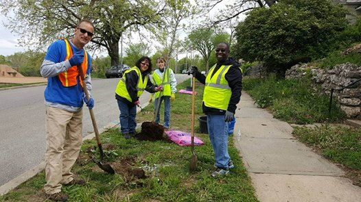 NEWS: KC Parks Receives TRIM Grant to Develop a Tree Planting Plan