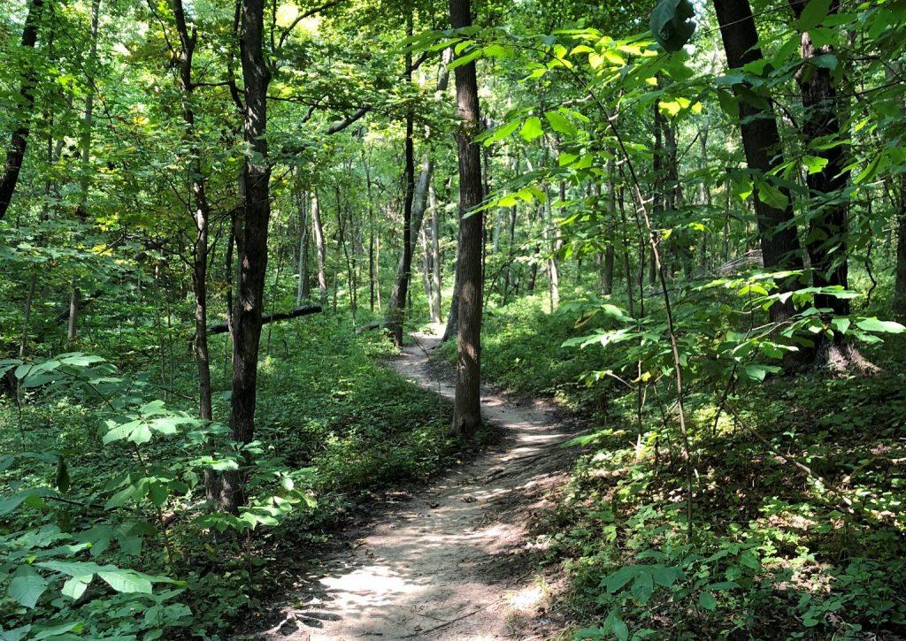 Hidden Valley Park Trail