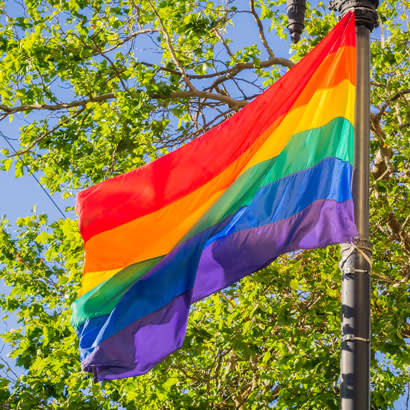 Pride in Parks: The Role of Parks in the Pride Movement and Supporting the LGBTQ+ Community