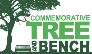 commemorative tree and bench