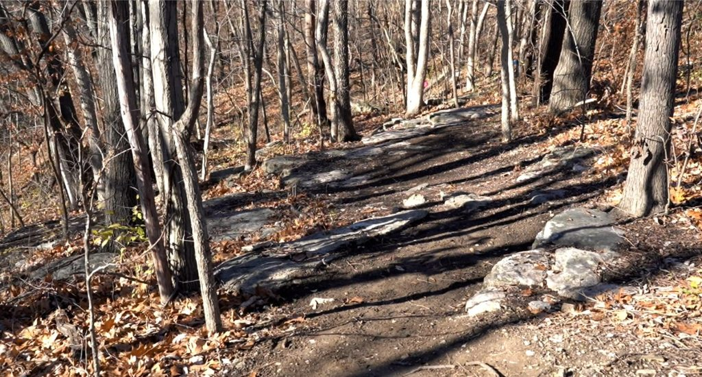 Blue Valley Park Oxbow Bluffs Trail