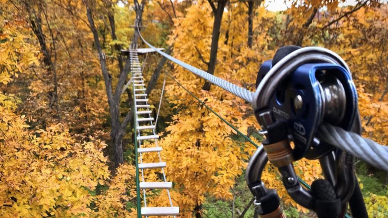 Go Ape Outdoor Zipline & Adventure Park Opens March 6 in Swope Park